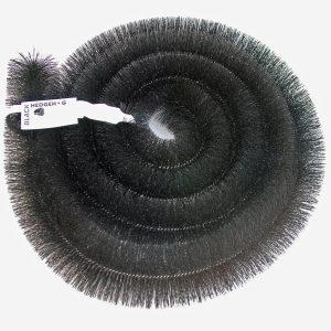Hedgehog i farven sort
